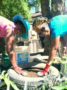 vonceil and tona gardening